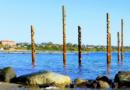 Havfruefløjter ved Østerstrand